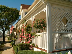 Trellis as a backyard features for privacy and shade